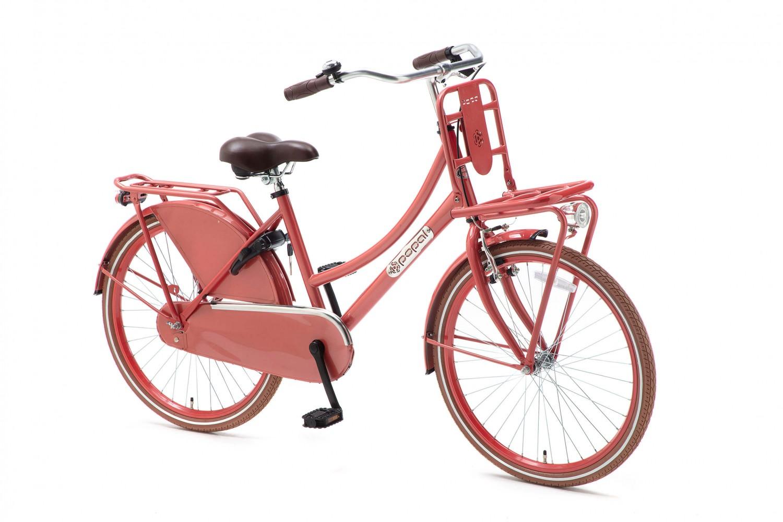 Popal Daily Dutch Basic Transportfiets 24 inch Meisjes Flamingo