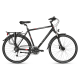 https://bigline.nl/image/cache/catalog/images/Fietsen/Sensa/cross_travel_disc_ltd_heren_black_mat-80x80.png